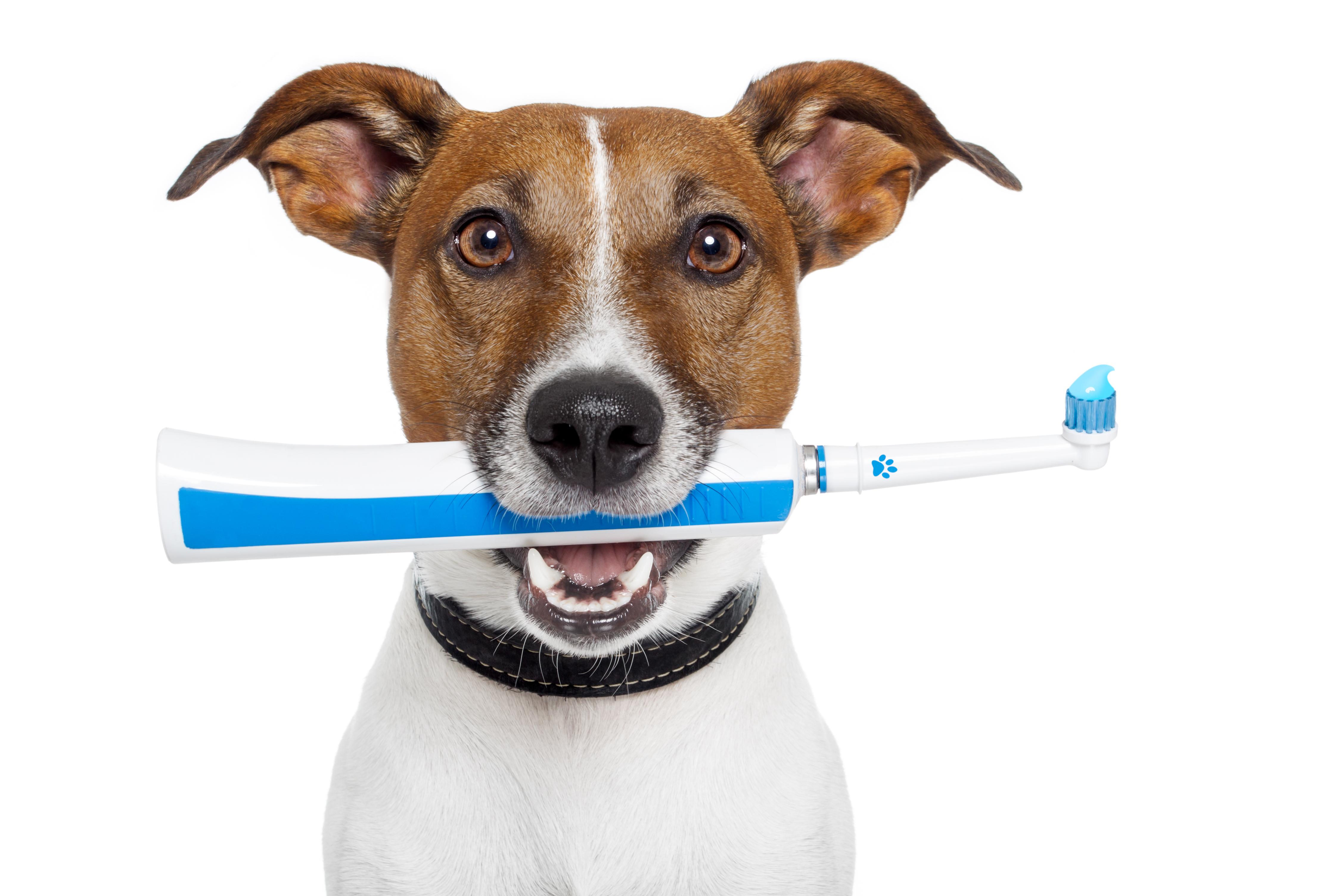 elektrische tandenborstel beter dan een gewone