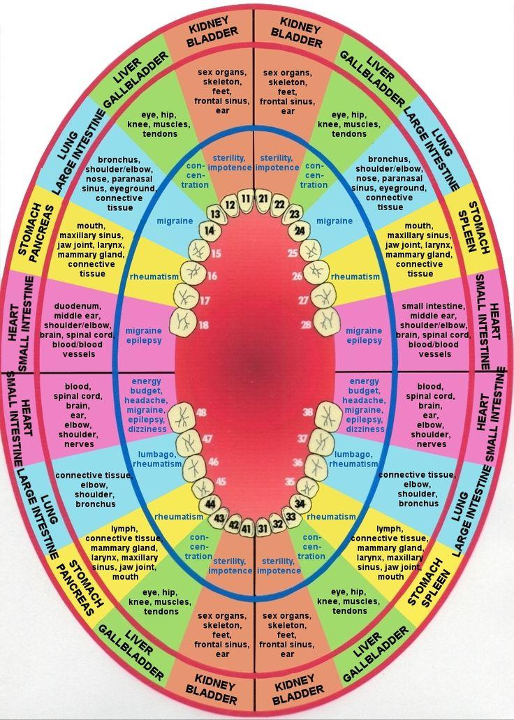 lbiologische tandarts